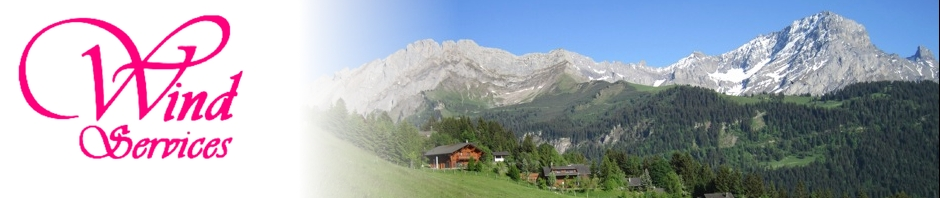 we take care of your dream place in gryon s alps since 1994